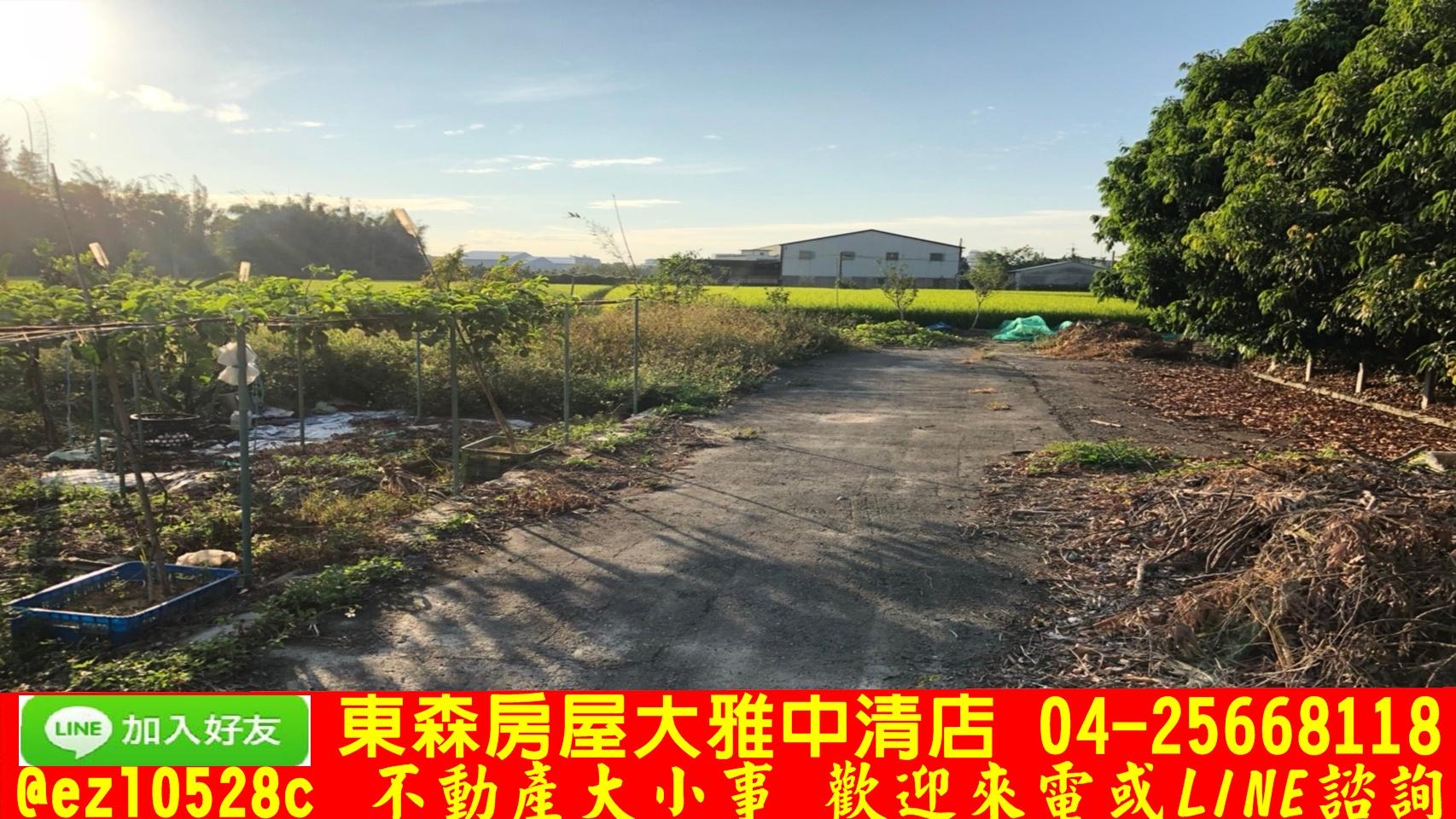 東森房屋大雅中清店-都內綠園道田
