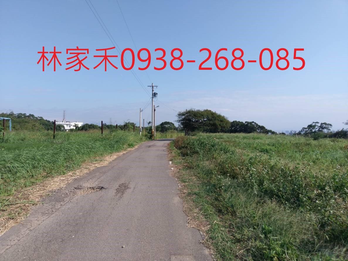 竹北明新科大田