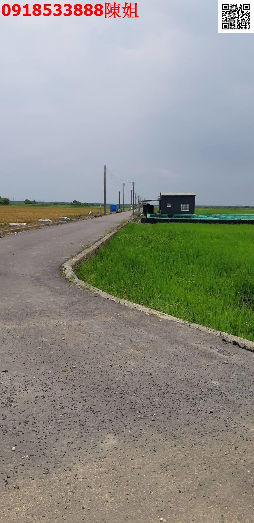 嘉義縣鹿草下半天農地868坪 大面寬正路邊近交流道