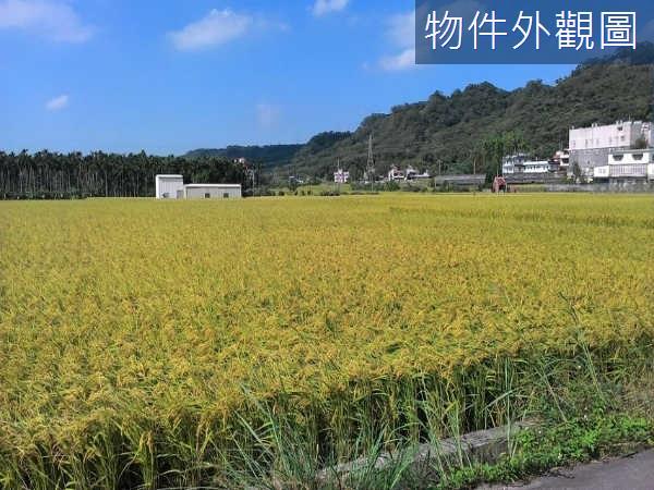 芎林金獅超方正水稻田(稀有出售)~每坪開價3.8萬~