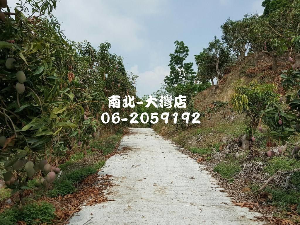 玉井九層林1甲1農地