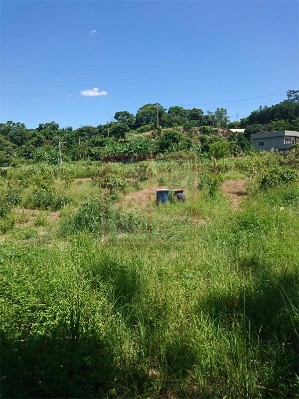 茄苳中華大學農牧用地-春明地產-035551111