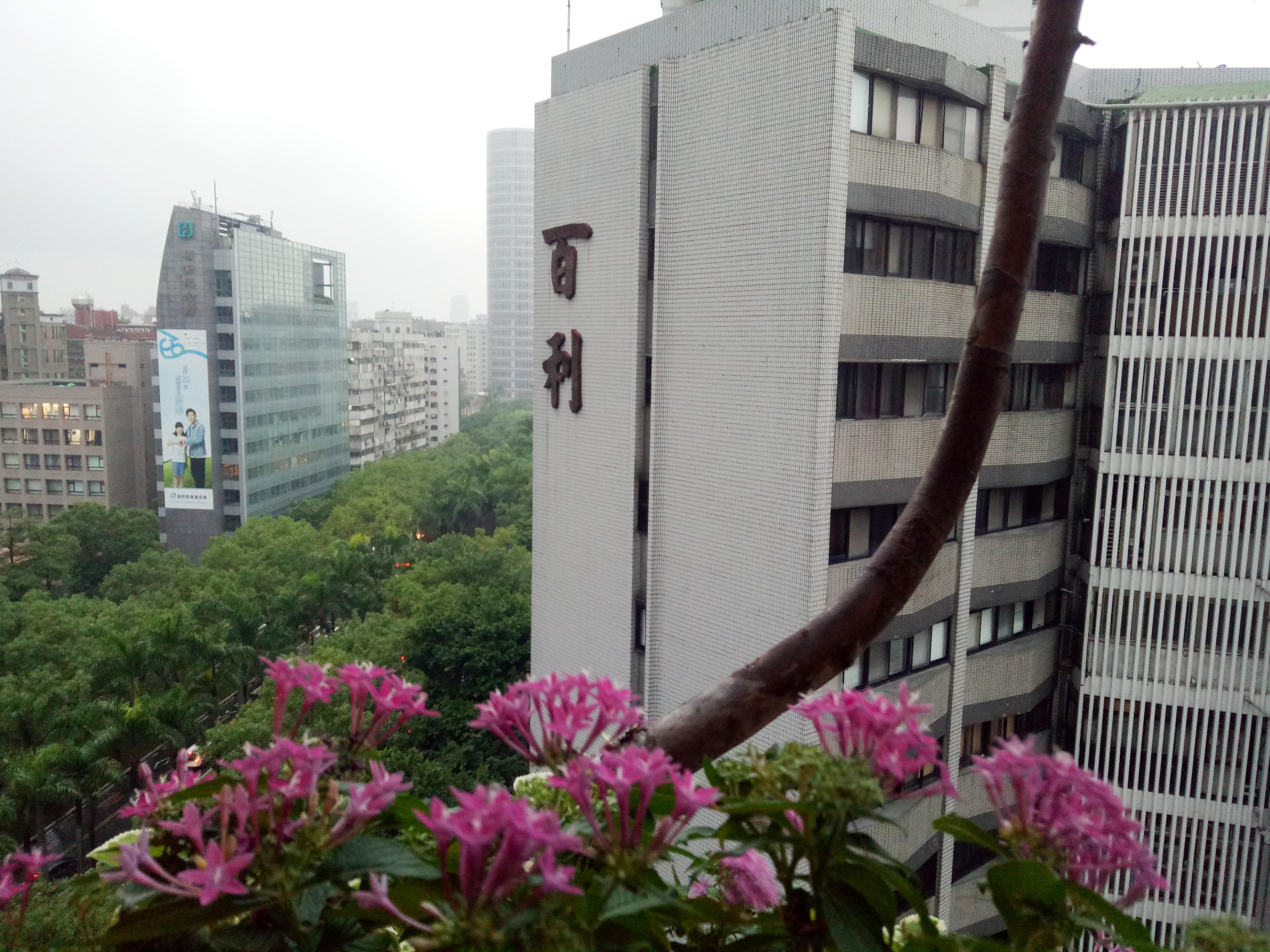 仁愛百吉高樓101景觀 -經典名宅