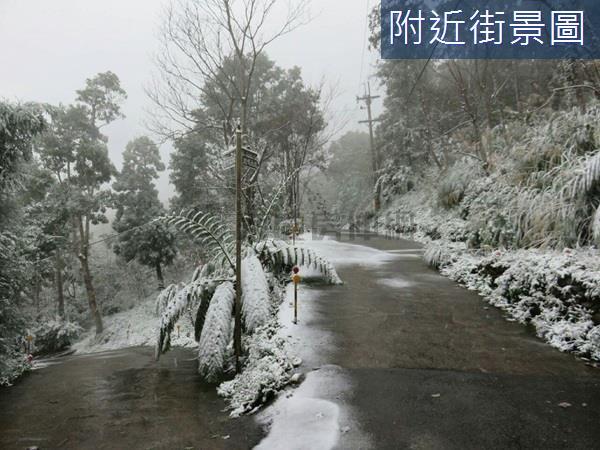 竹東鹿鳴山莊景觀美農地