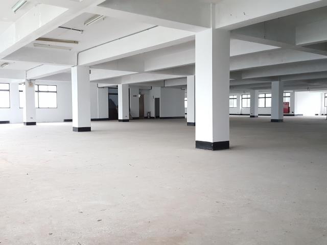 近楊梅交流道可分租RC廠房22