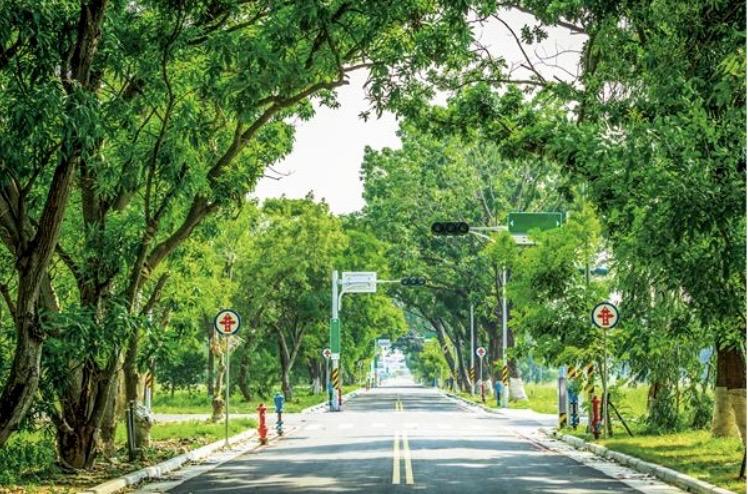 圖片:台南搶地風潮將再現!平實重劃區帶頭喊衝
