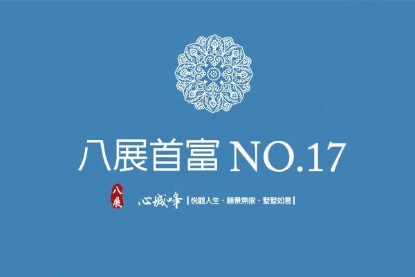 八展首富NO.17