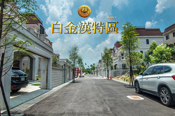 白金漢No.5